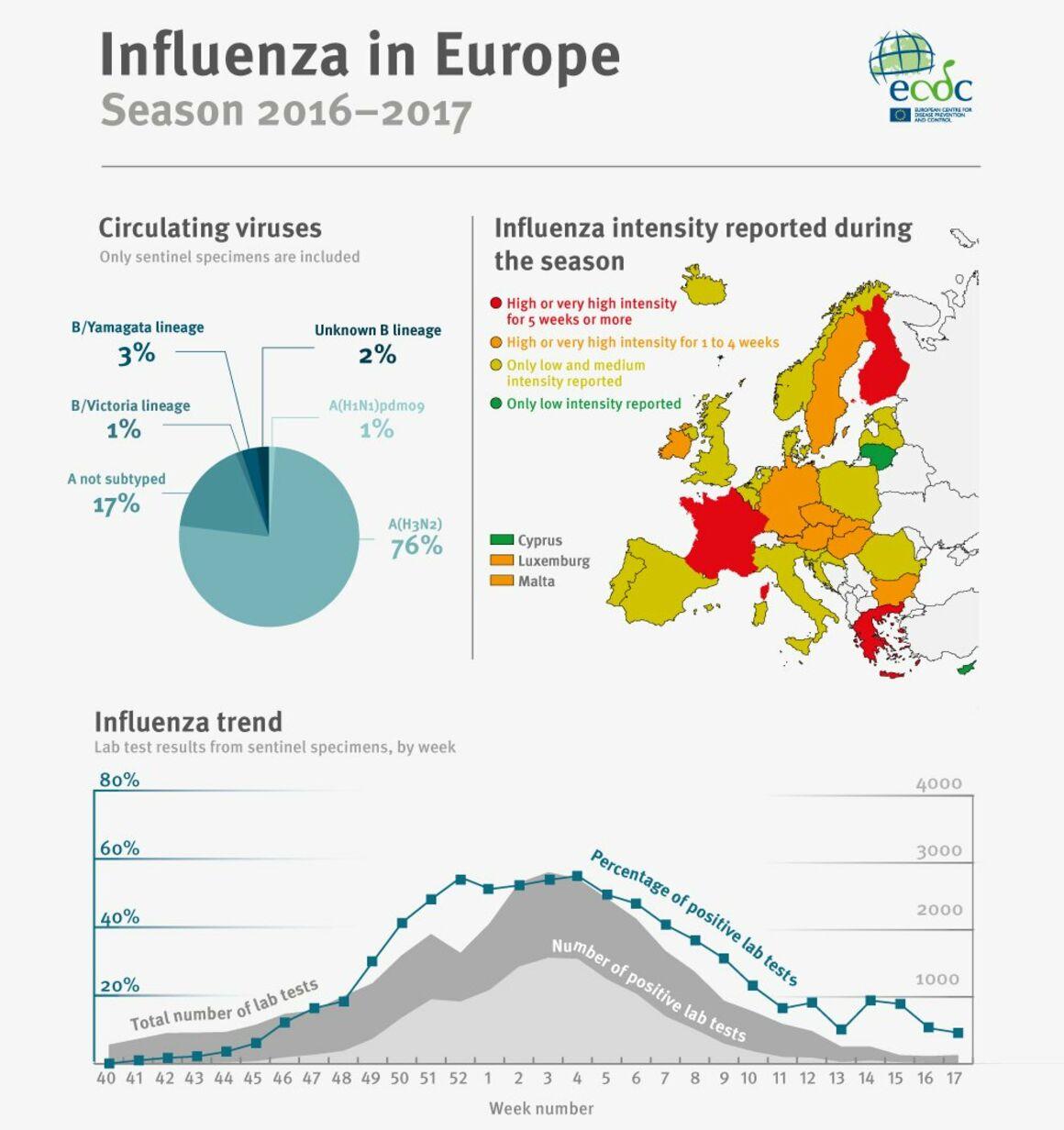 grippetote 2018 deutschland statistik