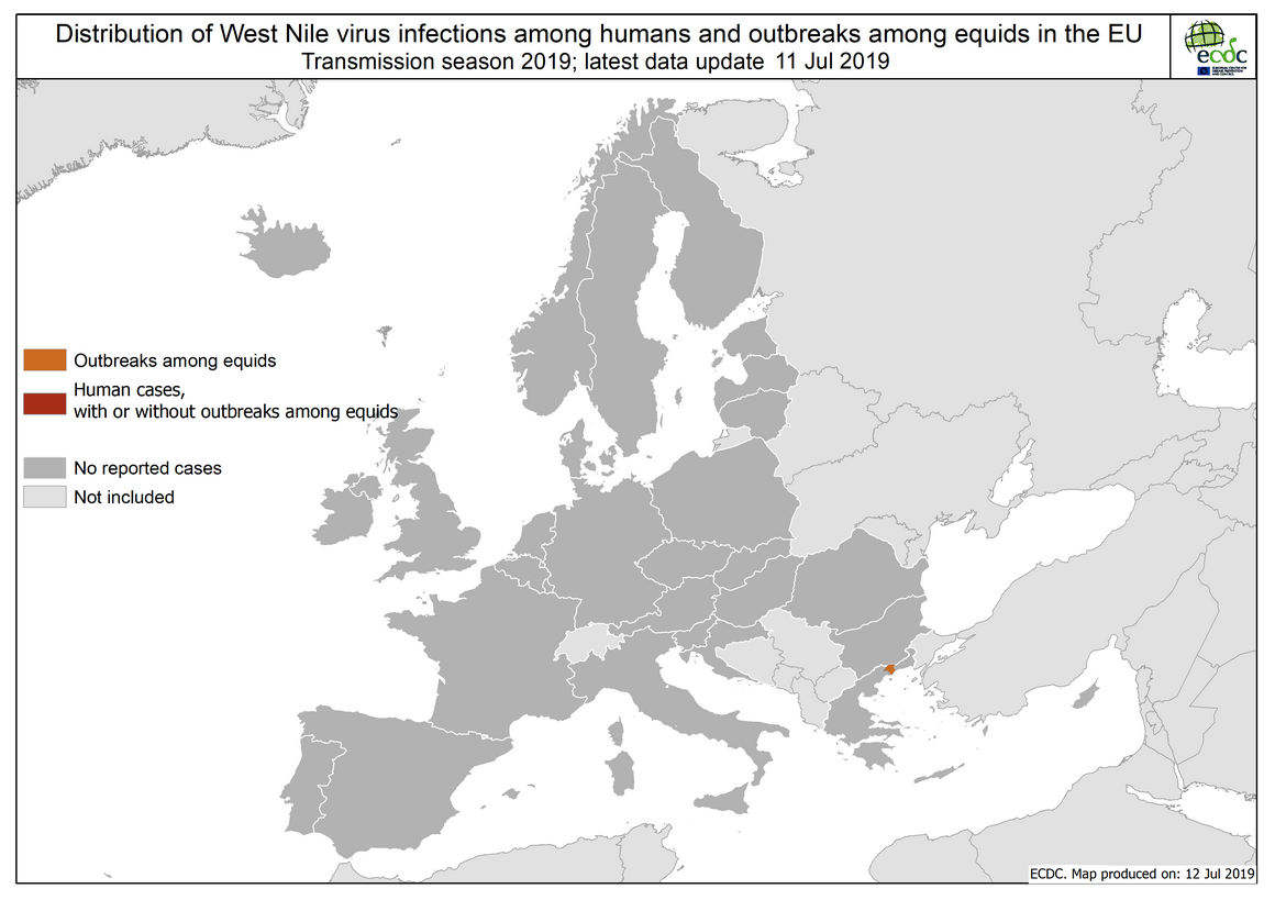 West Nile virus in Europe in 2019 - human and equine cases, updated 11 July
