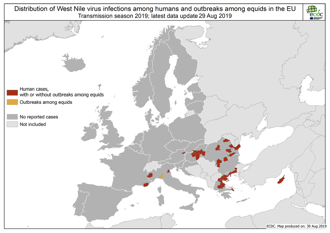 West Nile virus in Europe in 2019 - human and equine cases, updated 30 August
