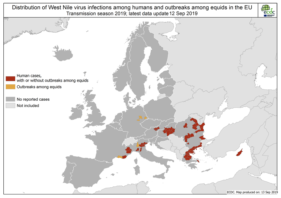 West Nile virus in Europe in 2019 - human and equine cases, updated 13 September