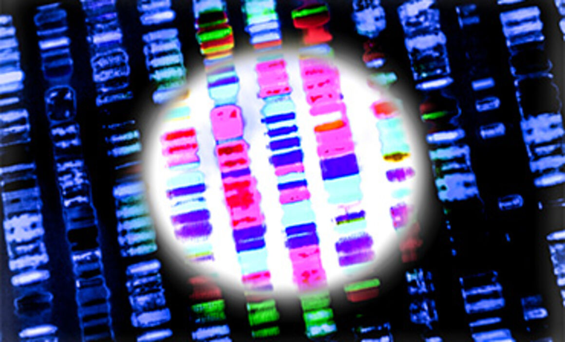 Molecular and genomic typing. © Istock