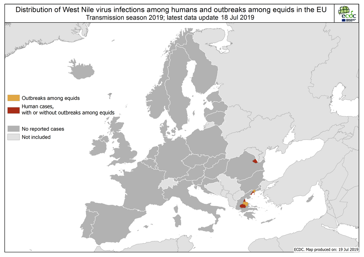 West Nile virus in Europe in 2019 - human and equine cases, updated 18 July