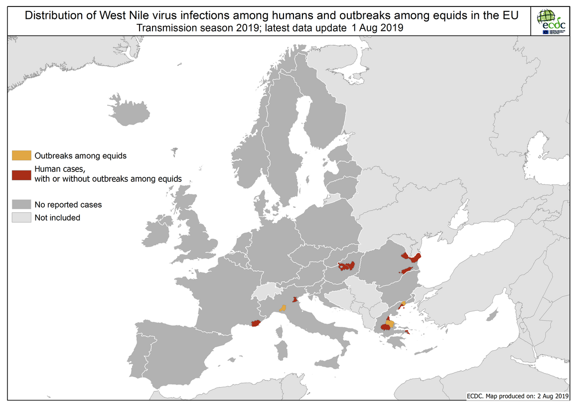 West Nile virus in Europe in 2019 - human and equine cases, updated 1 August