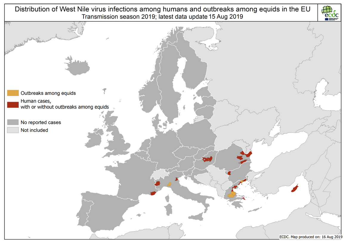 West Nile virus in Europe in 2019 - human and equine cases, updated 15 August