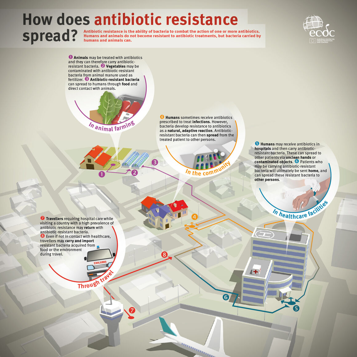 Infographic explaining how antibiotic resistance spreads