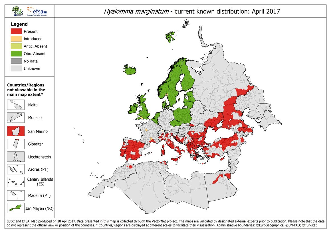 Map of the distribution of Hyalomma Marginatum ticks in Europe, as of April 2017
