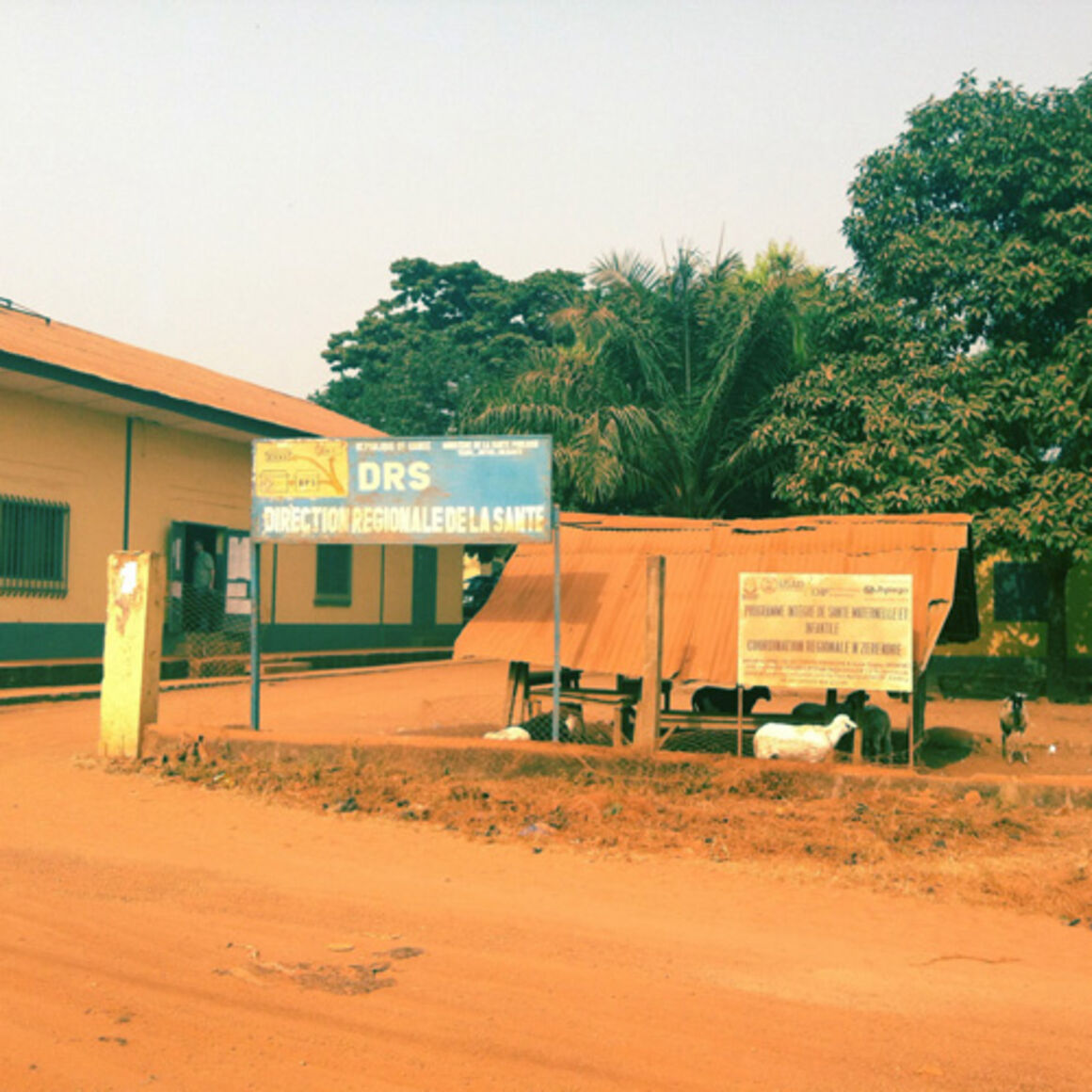 EPIET Postcard from the field - Health administrative building in Guinea